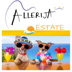 Allerija - Estate-cover