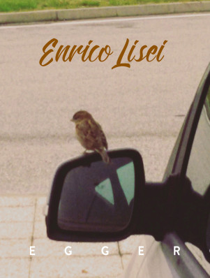 cover - ENRICO LISEI