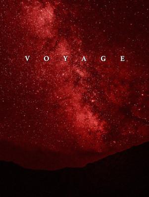 Voyage Artwork